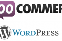 WordPress – Woocommerce – Supprimer des champs ou les rendre obligatoires ou non – Remove Fields from Woocommerce checkout page or make some fields mandatory or not