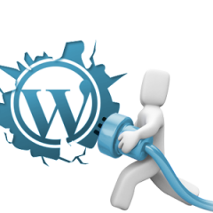 WordPress – Woocommerce – Utiliser un lien à la place du shortcode [add_to_cart id= »xxx »] – Replace the shortcode [add_to_cart id= »xxx »] by a simple link with the same function